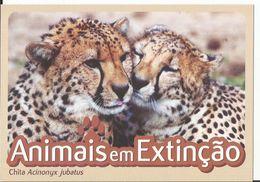 Animales En Peligro De Extinción: Guepardo. - Animales