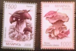 Belarus 2008. Mushrooms. Set Of 2 Stamps. MNH - Belarus
