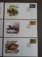 1976 WWF - 3 Enveloppes Rousset Canard Rat - FDC Animaux WWF Le Médaillier N° 13, 14, 15 Série Medaillier - FDC