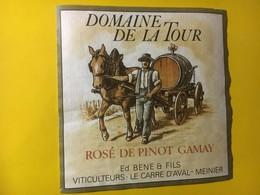 8095 - Domaine De La Tour Rosé De Pinot Gamay  Meinier Genève Suisse - Etiquettes