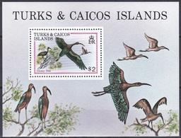 Turks Und Caicos 1980 Tiere Fauna Animals Vögel Birds Oiseaux Pajaro Uccelli Sichler Ibis, Bl. 21 ** - Turks & Caicos