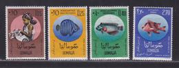SOMALIE N°   19 à 21, AERIENS N° 17 ** MNH Neufs Sans Charnière, TB (D6376) Pour L'enfance, Poissons - Somalia (1960-...)