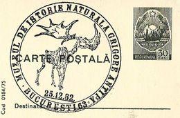 Roumanie Romania (1975) Entier Postal Musée Histoire Naturelle Gr. Antipa. Renards, Megaloceros. Postal Stationery - Timbres