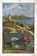 LOT N°434 - LOT DE 140 CARTES DE CHILLON ET LE LAC LEMAN - VD Vaud