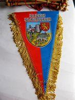 ANCIEN FANION LA CAVALERIE LARZAC ETAT EXCELLENT - Flags