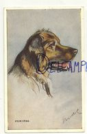 """Chien (race ?). Signée Mac. Film Star. """"Tailwagger"""" - Andere Illustrators"""