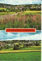 Un Bonjour D' Odeigne. (2 Scans). - Manhay