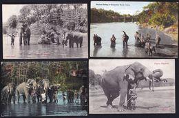 4 X OLD CARD CEYLON ** ELEPHANTS ** - Sri Lanka (Ceylon)