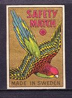 Schweden, Zuendholzschachteletikett, Papagei (48991) - Zündholzschachteletiketten