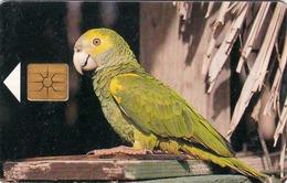 ANTILLES BONAIR- Yellow-Shouldered Parrot (Yellow Chip), 20 U, 10/97, Used - Antilles (Netherlands)