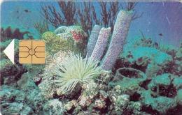 ANTILLES BONAIR- Coral Reefs (Black Chip) , 60 U, 10/97, Used - Antilles (Netherlands)