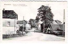 BUTGENBACH - Route De Bütgenbach - Butgenbach - Buetgenbach
