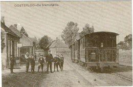 Oosterloo - De Tramstatie - Geel
