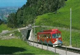 SUISSE (Canton De Saint-Gall) Chemin De Fer à Crémaillère  RHEINECK-WALZENHAUSEN - Automotrice BDeh 1/2 N°1 - Trains