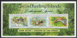 Cocos (Keeling) Islands 1992 MNH Scott #263 Sheet Of 3 Buff-banded Rail - Cocos (Keeling) Islands