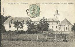 PLEAUX --petit Séminaire, Côté De La Chapelle                                                    -- Roux 654 - France