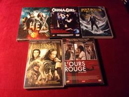 LOT DE 5 DVD   POUR 10 EUROS ( Lot 16 ) - DVDs