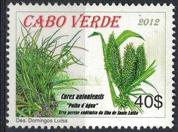 Cap Vert 2012 Neuf Avec Gomme Carex Antoniensis Herbe Vivace Endémique île De Santo Antão - Cape Verde