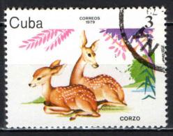 CUBA - 1979 - ANIMALI DELLO ZOO - USATO - Oblitérés