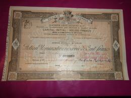 EAUX MINERALES DOCTEUR LEON JACQUET (100 Francs) 1905 - Aandelen
