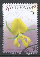 Slovenia 2007. Scott #696 (U) Flowers, Genisia Holopetala * - Slovénie
