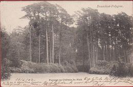 Brasschaat Brasschaet Polygone Paysage Au Chateau Du Mick Kasteel 1902 (In Zeer Goede Staat) Hoelen Cappellen 311 - Brasschaat
