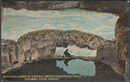 Natural Bridge Near Celilo Falls, Columbia River, Oregon, C.1912 - Louis Scheiner Postcard - United States