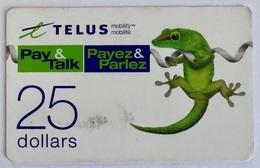 Gecko - Canada