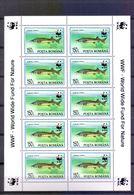 Neh173MSb WWF FAUNA VISSEN FISH STURGEON FISCHE MARINE LIFE ROEMENIË ROMANA 1994 PF/MNH # READ # - W.W.F.