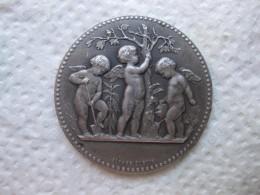 Médaille Argent  , 3 Anges Chérubins Nus Dans Le Jardin , Par Alphée Dubois - Francia