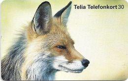 Sweden - Telia - Fox Räv - 30U, 02.1997, 100.000ex, Used - Sweden
