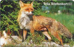 Sweden - Telia - Fox Räv - 60U, 01.1999, 100.000ex, Used - Sweden