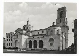 CATANZARO -  IL DUOMO  - NV   FG - Catanzaro