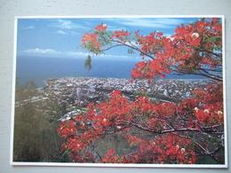 LA REUNION /  JOLI LOT DE 7 CARTES PHOTOS / TOUTES LES PHOTOS - La Réunion