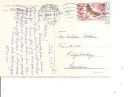 Liban -Papillon ( CP De 1966 De Beyrouth Vers La Suède à Voir) - Lebanon