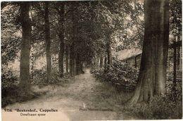 """9516 """"Beukenhof"""" Cappellen  Dreef Naast Spoor - Kapellen"""