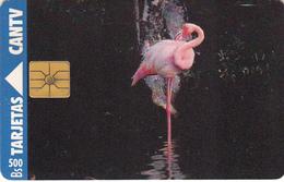 Venezuela -  Phonecard - Superb Fine Used Phonecard - Venezuela