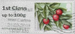 GB 2014 Winter Greenery 1st Type 4 Used Issuing Office 602519 [32/132/ND] - Great Britain