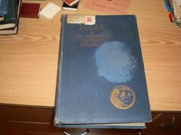Hungary Baja Es Bacs Bodrog Varmegye Kozsegei Dr Rapcsanyi Jakab Budapest 1934 667 Pages - Livres, BD, Revues