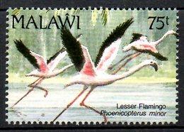 MALAWI. N°603 De 1991. Flamant Rose. - Flamingos