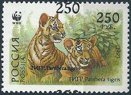 B1248 Russia Rossija Fauna Wild Animal Mammal Cat Of Prey Tiger MNH ERROR - Errors & Oddities