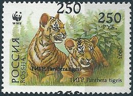 B1248 Russia Rossija Fauna Wild Animal Mammal Cat Of Prey Tiger MNH ERROR - 1992-.... Federación