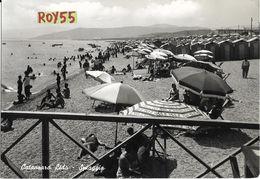 Calabria-catanzaro Lido Veduta Animatissima Spiaggia Cabine Ombrelloni Sdraio Bagnanti Pin Ups Anni 50/60 - Catanzaro