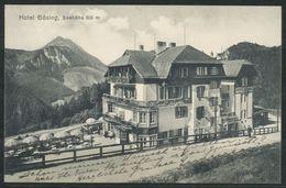 Ansichtskarten  -  Hotel Gösing - Wiener Neustadt