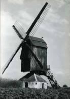 PAMEL - Roosdaal (Vlaams-Brabant) - Molen/moulin - Historische Opname Van De Gewezen Keirekensmolen, Ingestort In 1970. - Roosdaal