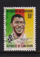 Cameroun 1993, Soccer, Minr 1208, Vfu. Cv Undetermined - Camerun (1960-...)