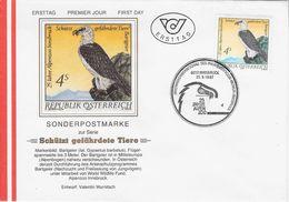 Tierenschutzt - 1981-90 Lettres