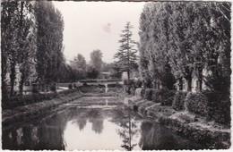 CARRIERES-SUR-SEINE - Vue Du Parc - CPSM PF Timbrée 1956 - Carrières-sur-Seine