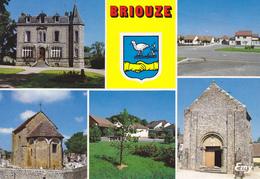 61 BRIOUZE / MULTIVUES / BLASON - Briouze