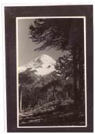 13844   -    PLAYA HOTEL - PUCON - LAGO VILLARRICA     /     NUOVA - Cile